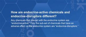 How are endocrine-active chemicals and endocrine-disruptors different?